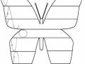 motyl-szlaczki